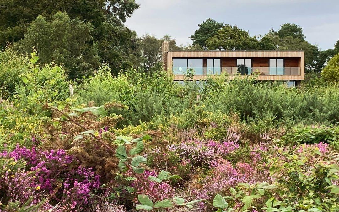 Dorset Heathland House Progress Photograph